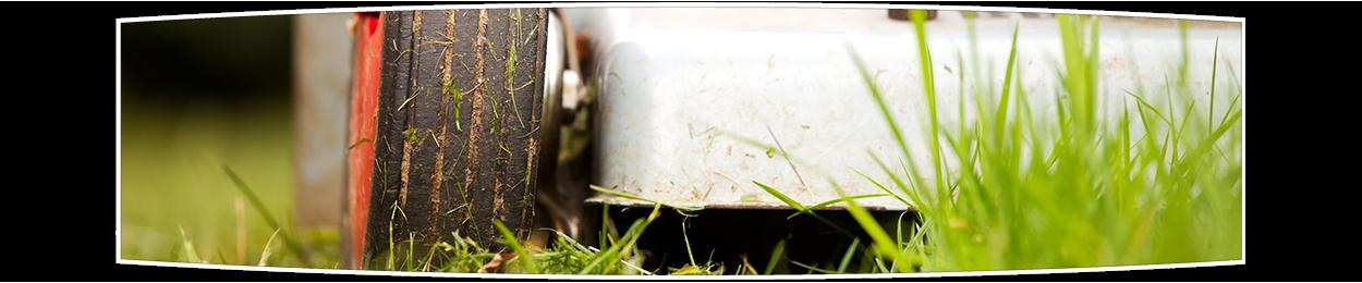 Lawn Mowing Green Horizons