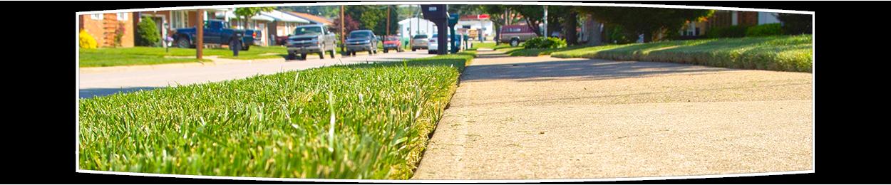 Lawn Edging Green Horizons
